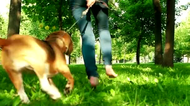 Happy young girl jogging with her beagle dog. Slow motion