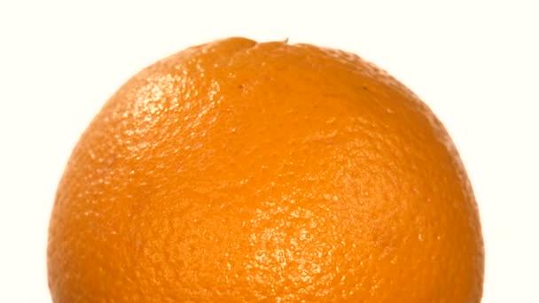 Horní části zralé oranžové izolované na bílém, rotace