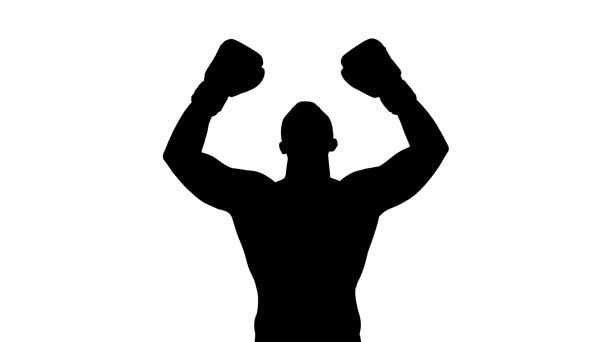 Boxer winner silhouette on white background