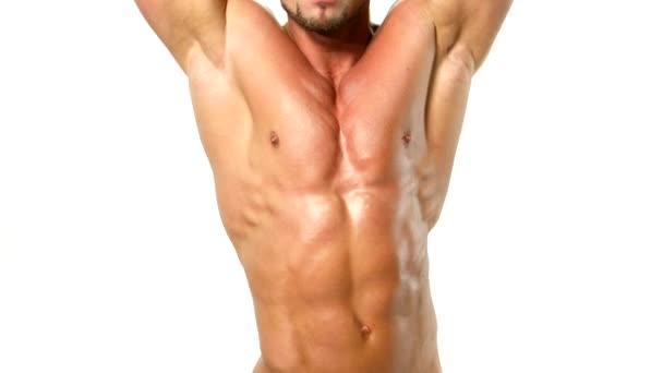 sexy e muscoloso torso di giovane uomo, bodybulider isolatedon bianco