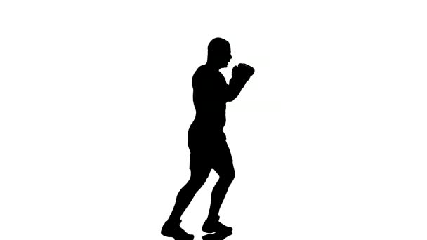 one caucasian man exercising boxing boxer  workout fitness in silhouette studio  isolated on white background