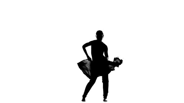 Beautiful professional dancer performs social latino dance, on white, silhouette