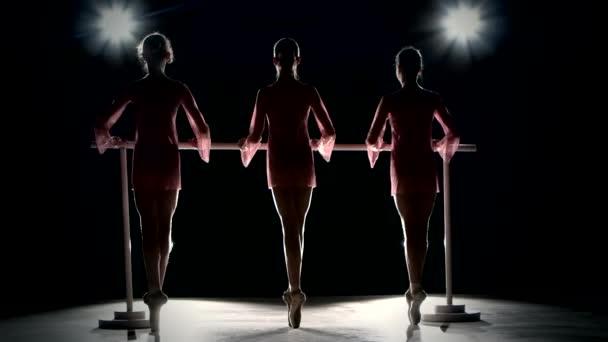Kleine Ballettmädchen in Tutu posieren beim Ballett barre
