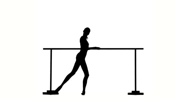 Ballerina in pointe posing on ballet barre. silhouette