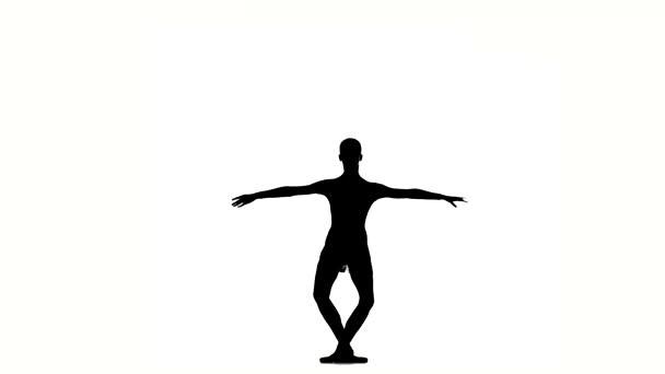 Beautiful  ballerina girl dancer on white. silhouette