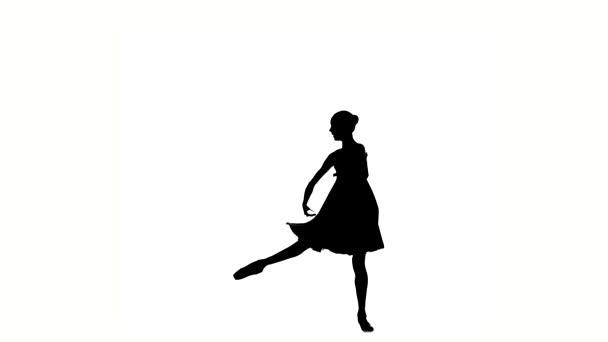 little Beautiful  ballerina girl dancer is wearing a dress. silhouette
