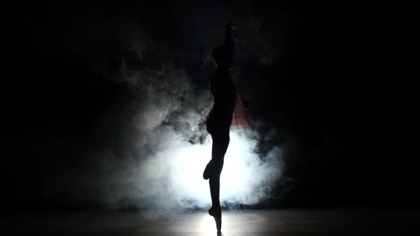 ballerina in dress large hall. slow motion. smoke