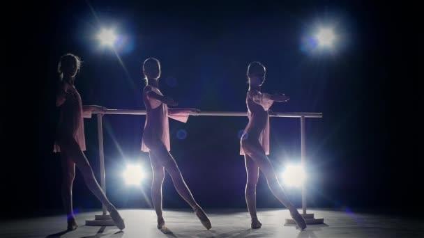 ballet girls  posing at ballet barre. slow motion. silhouette