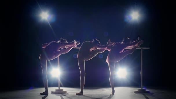 Tři baletní holky na baletní Barre. Zpomaleně