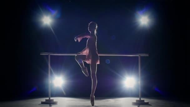 Eleganz Ballerina in der Nähe der Barre. Rauch. Zeitlupe