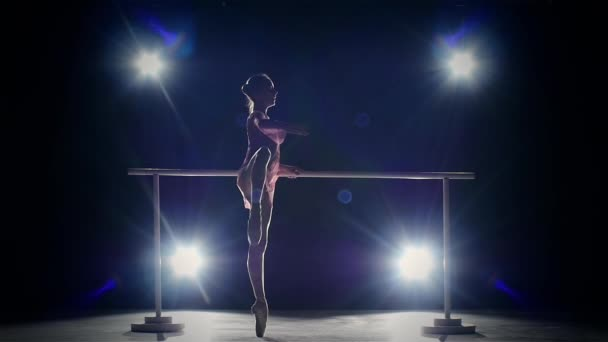 beauty ballerina near the barre. smoke. slow motion
