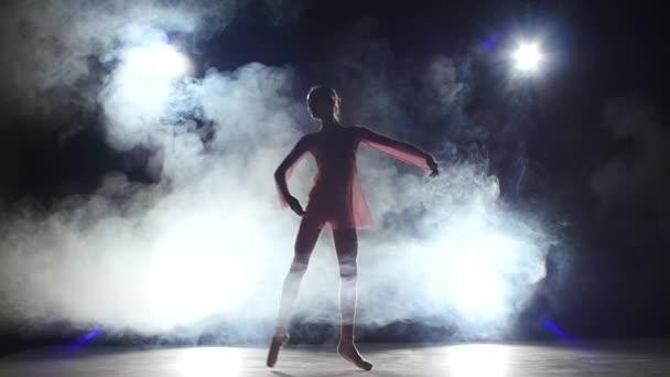 Young ballerina girl dancer in studio, smoke. silhouette. slow motion