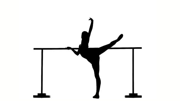 flexible Ballerina posing on ballet barre. silhouette. slow motion