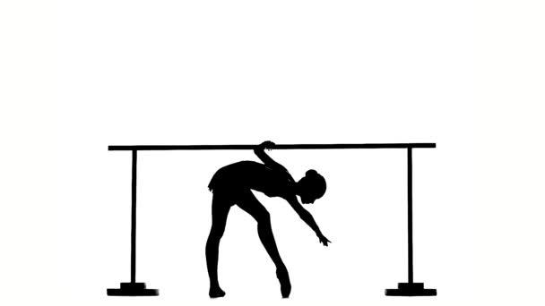 Ballerina in pointe posing on ballet barre. silhouette. slow motion