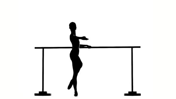 little  Ballerina in pointe posing on ballet barre. silhouette. slow motion