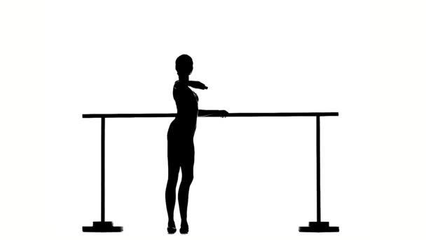little Ballerina in pointe posing on ballet barre. silhouette. slow motion
