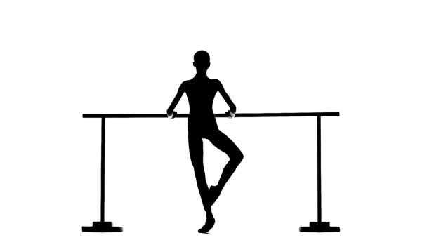 Beautiful  ballerina girl dancer. silhouette. slow motion