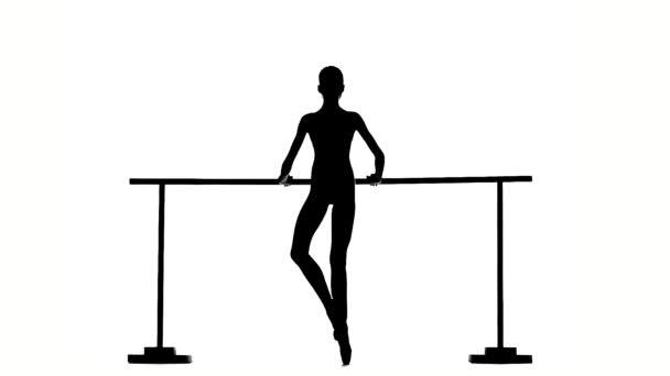 Beautiful  ballerina girl dancer on white. silhouette. slow motion