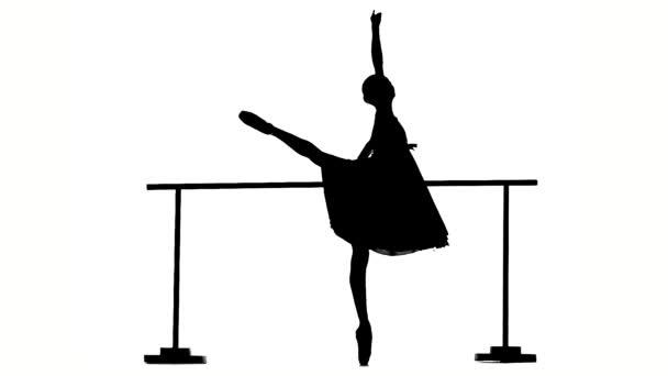Beautiful  ballerina girl dancer on dance Hall near barre. silhouette. slow motion