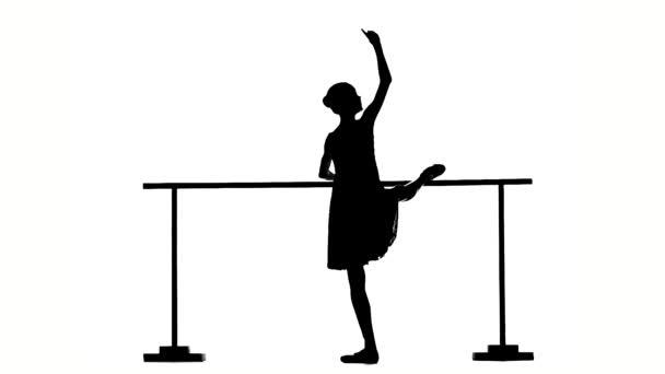 Beautiful  ballerina girl dancer near barre. silhouette. slow motion