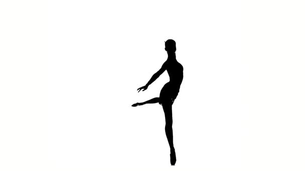 expressive ballerina girl dancer on dance Hall near barre. silhouette. slow motion