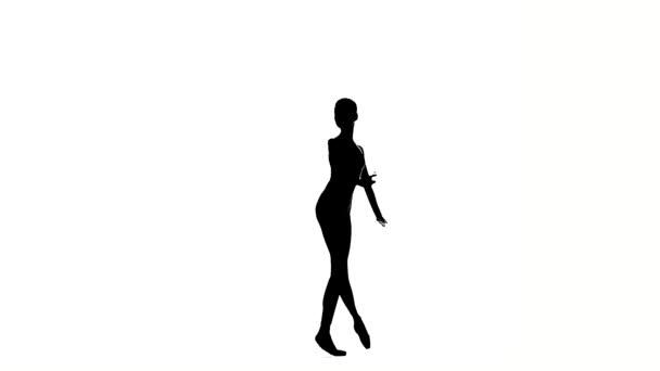 ballerina girl is wearing a dress. silhouette. slow motion
