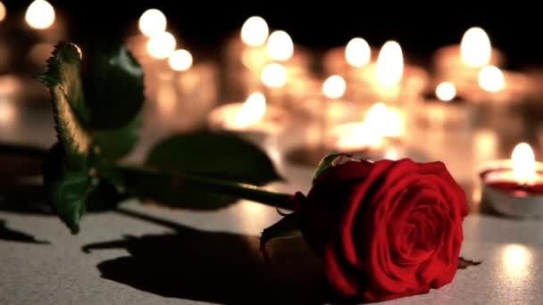 Romantische Atmosphäre: Kerzen Mit Rose U2014 Stockvideo