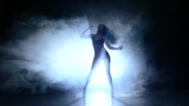silhouette of pretty stripper on refined naked woman  posing in the studio on dark, slow motion, smoke