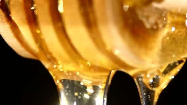 Med z dřevěnou lžící, na černém pozadí
