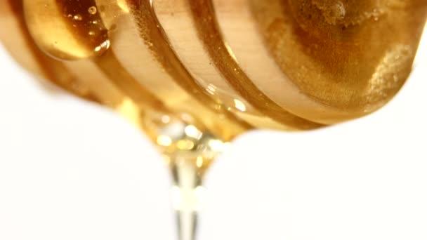 Med z dřevěnou lžící, na bílém pozadí
