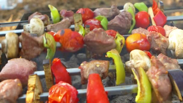 Assorted meat from chicken, pork and various vegetables for barbecue on grill, turning around, close up