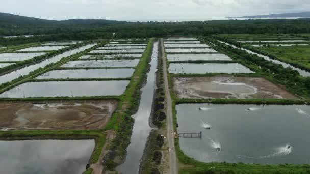 Luftaufnahme einer Fischerei- und Garnelenfarm im Santubong-Gebiet von Sarawak, Malaysia