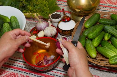 Pickling cucumbers, pickling - hands close-up, cucumber, herbs,