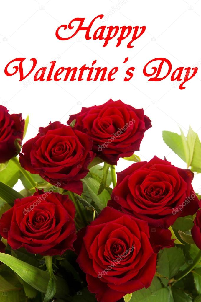 Happy Valentines Day Red Roses On A White Background Stock Photo