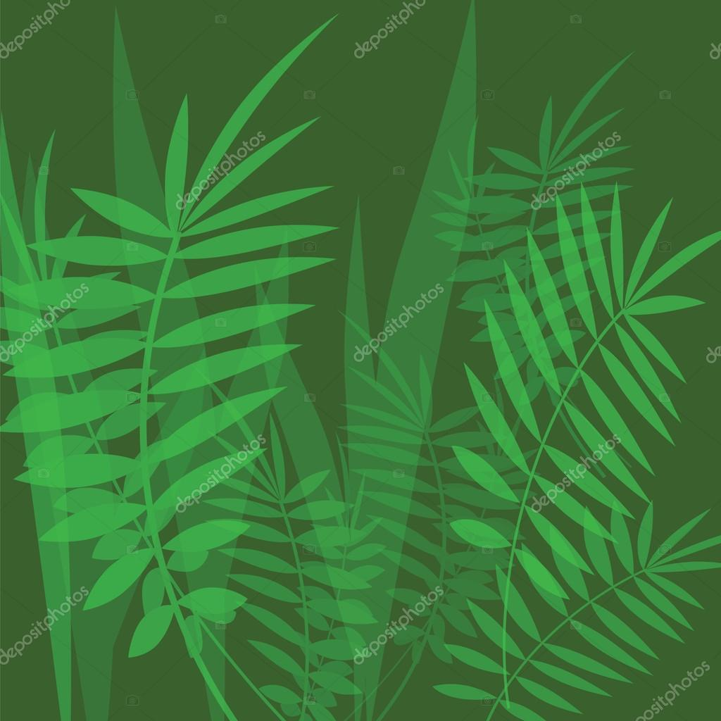 Vector image with fern leaves