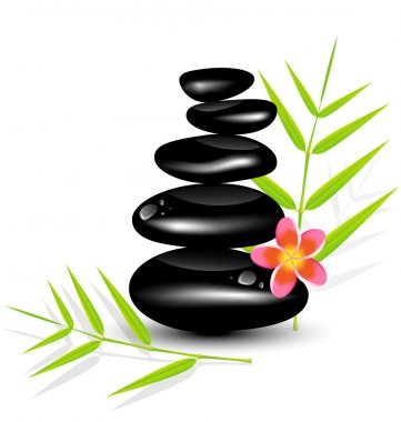 Hot Stone Massages and bamboo leaf