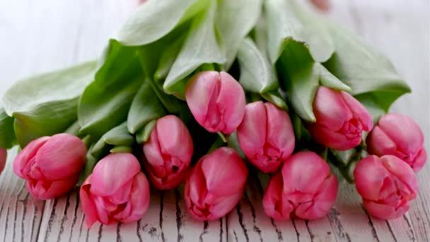 Strauß rosa Tulpen auf weißem Holzgrund. Konzept zum Frauentag, Muttertag, 8. März, 4K