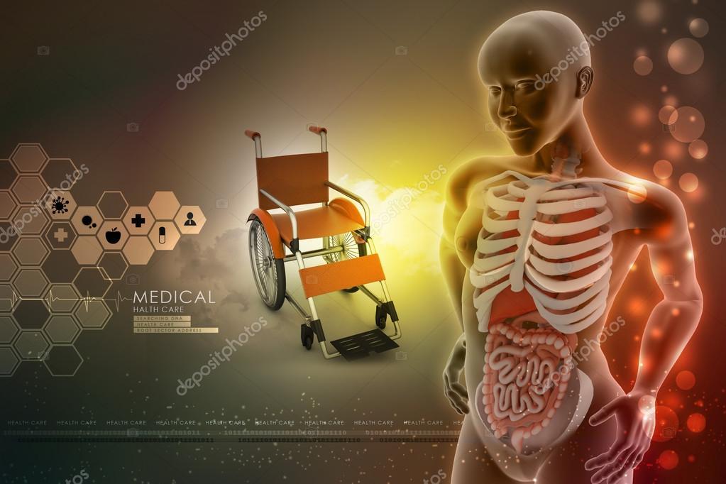 menschliche Anatomie — Stockfoto © cuteimage1 #56206019