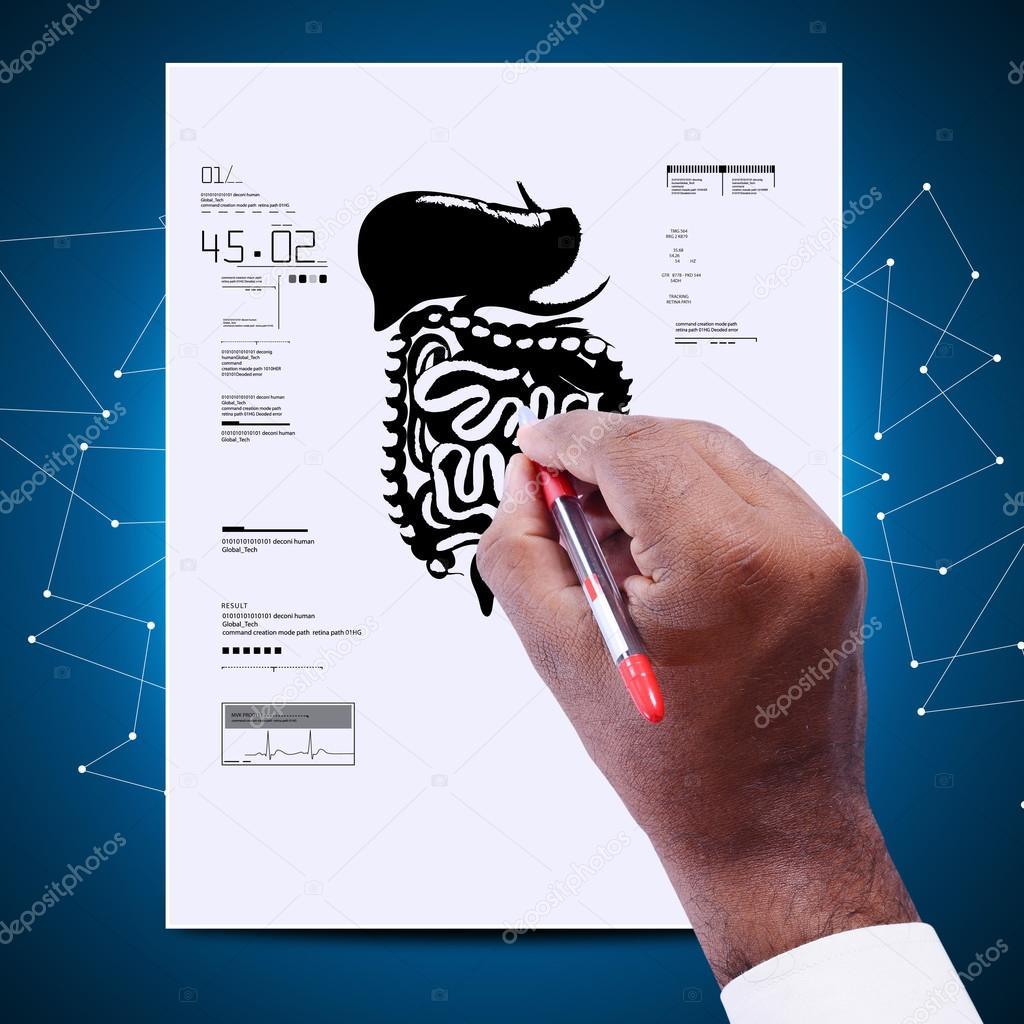 médico con el diagrama del sistema digestivo — Foto de stock ...