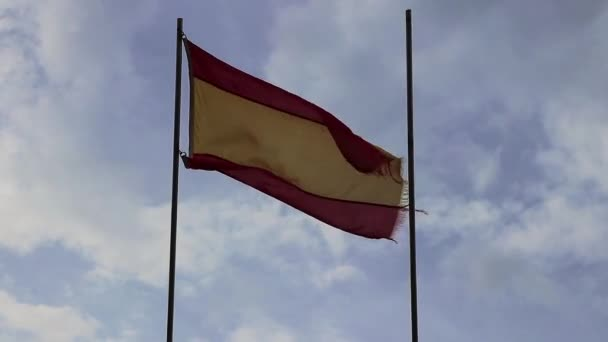 Spain flags in Campos on Mallorca in Spain.
