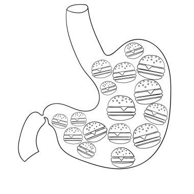 Human stomach Vector illustration 1