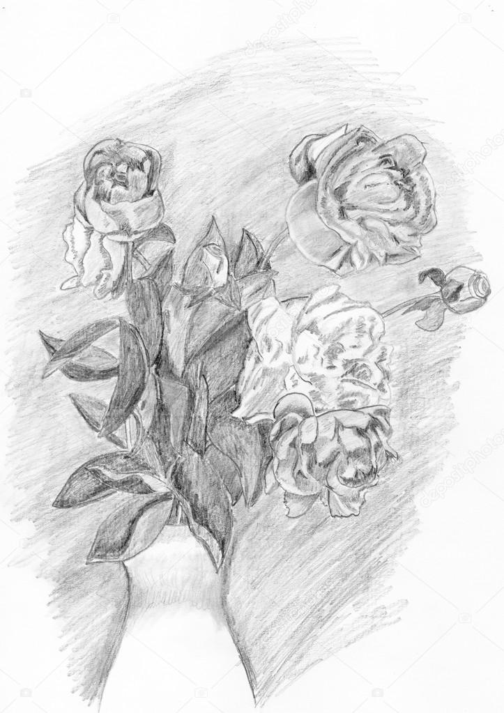 Drawing of  flowers on white