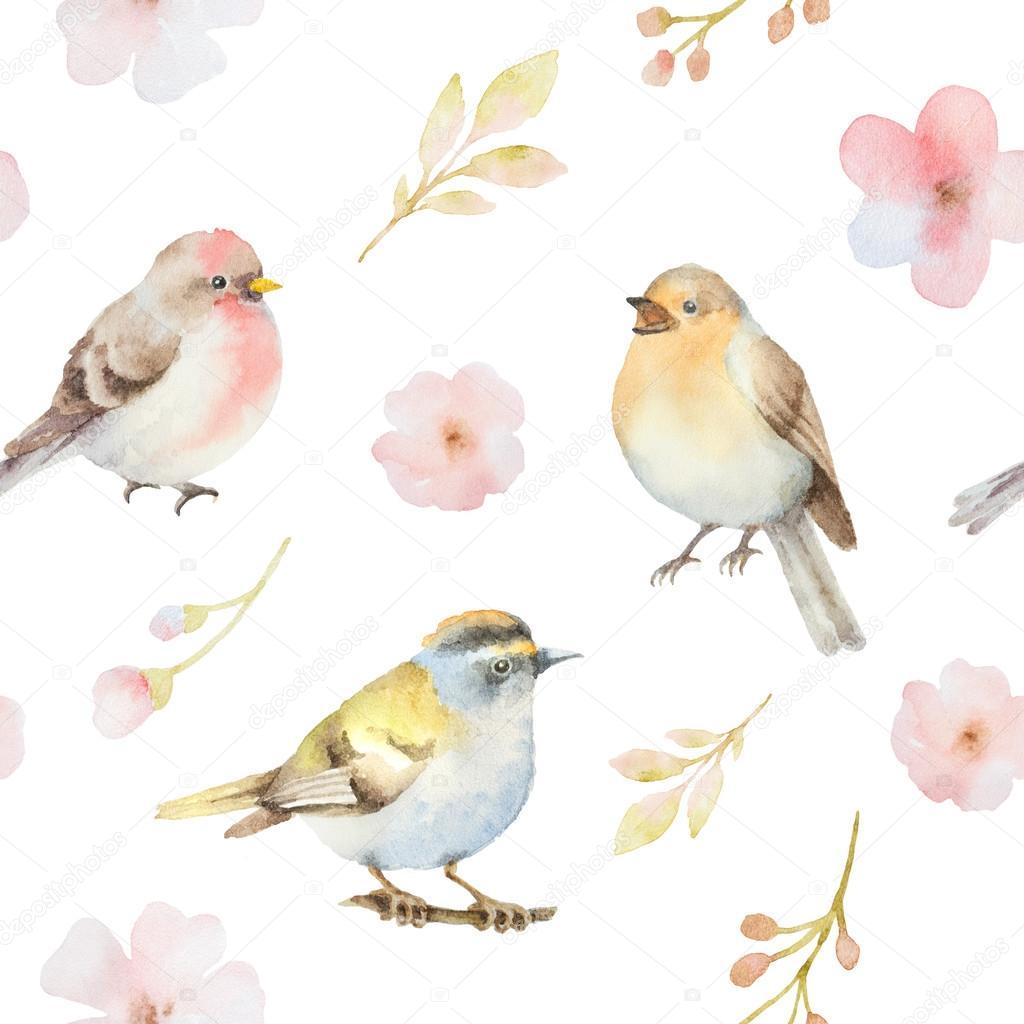 Uccelli e reticolo senza giunte dell 39 acquerello di fiori - Primavera uccelli primavera colorazione pagine ...