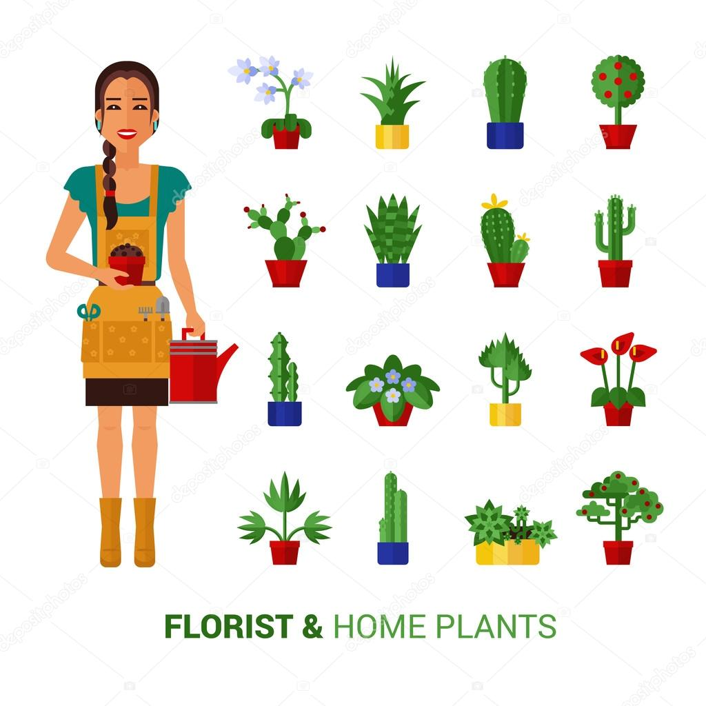Florist And Home Plants  Flat Icons