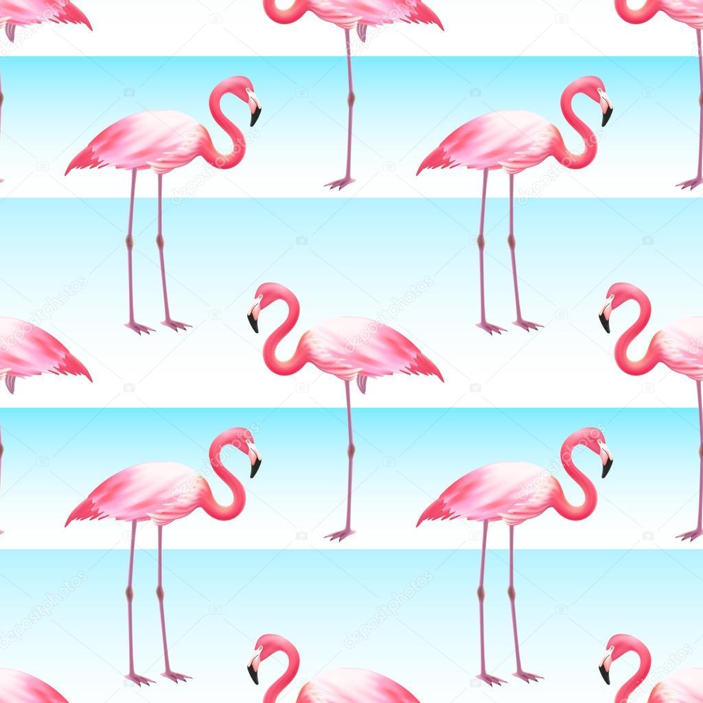 Pink Flamingo Seamless Horizontal Stripes Pattern