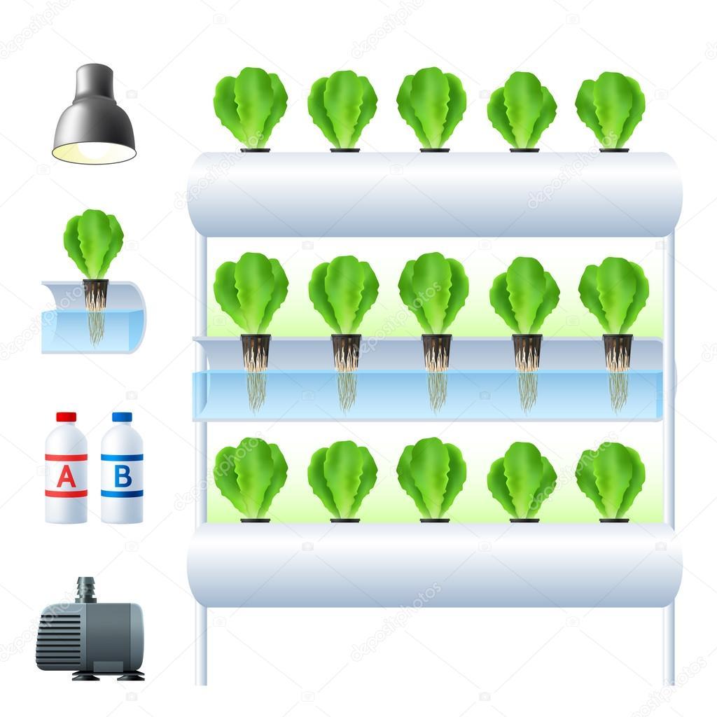 Hydroponics System Icon Set