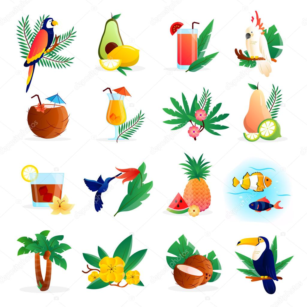 Tropical Icon Set