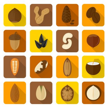 Nuts Icons Set