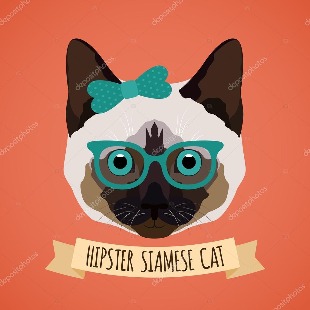 Hipster cat portrait