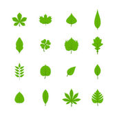 Green leaves flat icons set